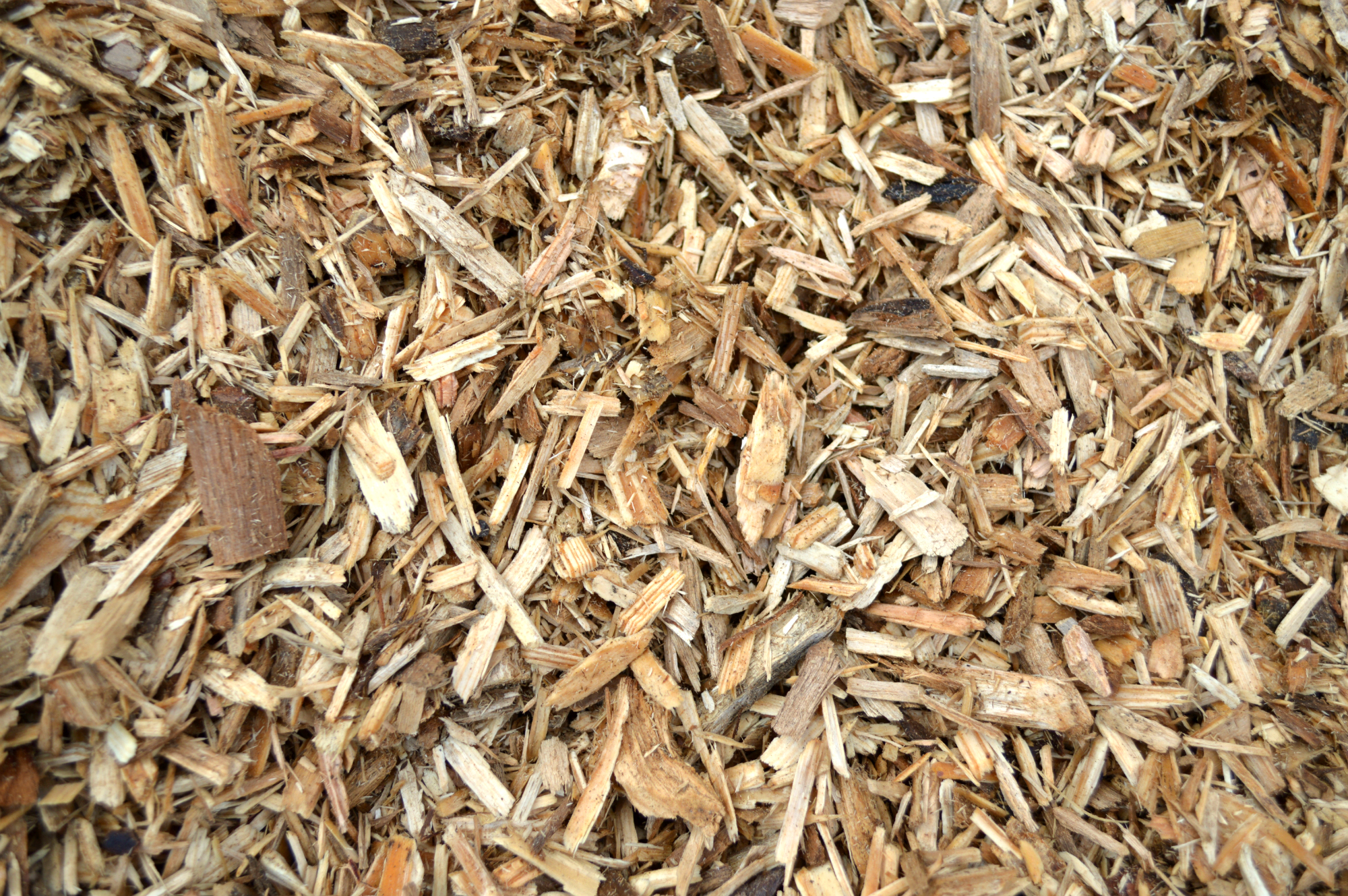 Natural Wood Chips